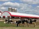 05 - Poľnohospodárstvo - maštaľ (LBS)