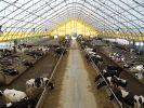 04 - Poľnohospodárstvo - maštaľ (TBS)